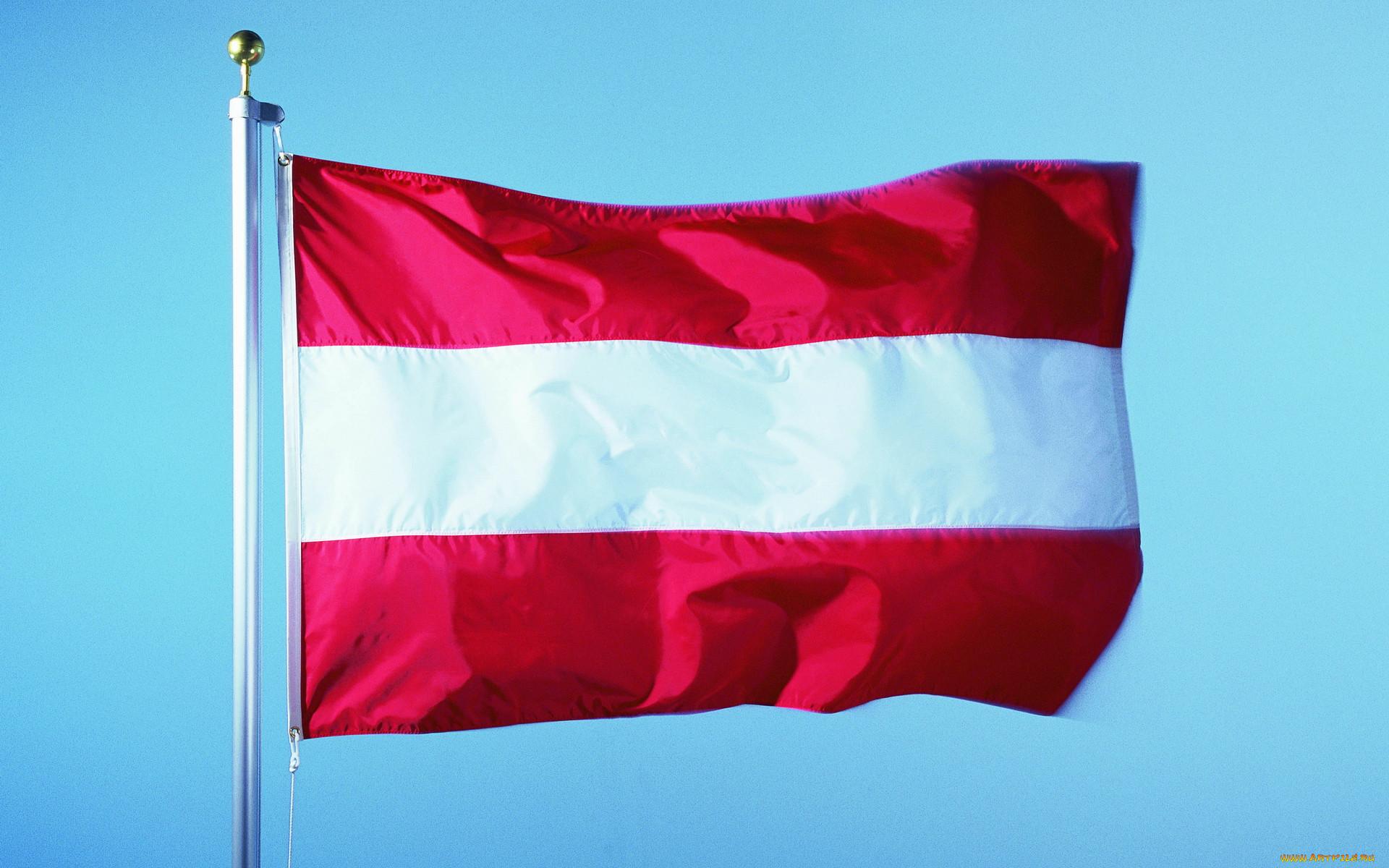 развиваться флаг и герб фото австрийский медведь заебавший всех
